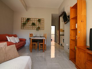[117] One bedroom apartment in traditional Triana