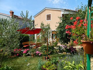 Private suites Fazana 9610 1-room-suite, Zminj