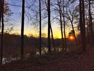 Egret Cottage-25 Steps to Private Pond  (Also near new Braves BallField), Atlanta