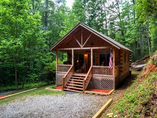 'Little Rock Creek Cabin' Quaint 1BR Genuine Log Cabin in Rich Mountain w/Wifi & Nice Porch - Near Blue Ridge, Ellijay, Outdoor Recreation & More!, Cherrylog