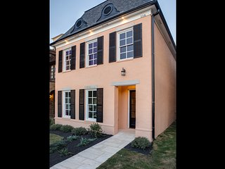 Brand new downtown home in gated neighborhood