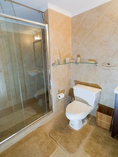 Guest bath with a large 2-person shower
