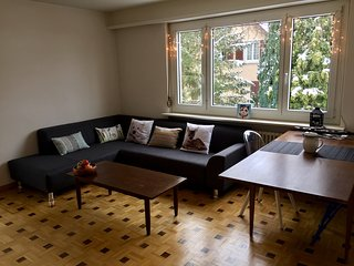 A cheaper alternative to Zurich, private bedroom in a furnished apartment!, Winterthur