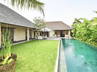 Villa Lala. Brand new 3 bedroom tropical villa, Seminyak