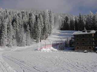 Direttamente sulle piste da sci, Madonna Di Campiglio