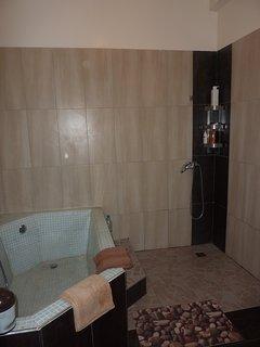 Salle de bains attenante à la chambre rez de chaussée