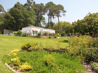 The little Guinea Fowl self catering accommodation in Constantia, cape Town