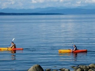 kayak the tranquil shores