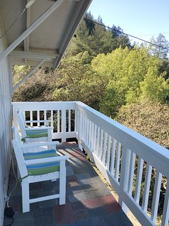 Wrap around deck off the living room
