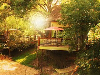 Amazing Custom Treehouse! Conveniently Located near Whitewater Amphitheater!