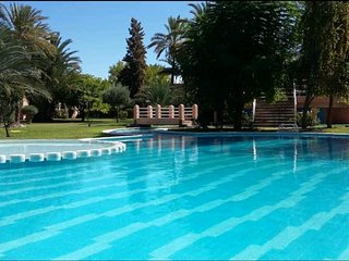 Charming Villa with Pool, palm Grove
