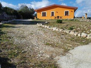 Orange #11483.1