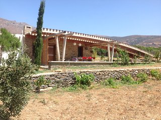 Andros bioclimatic stone house in a big orchard