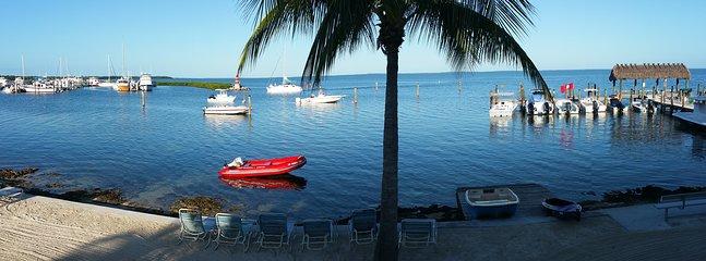 Notre « vue millions de dollars » panoramique depuis notre terrasse ....