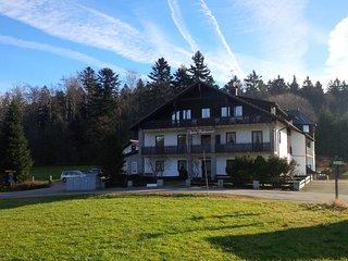 NEU: Außergewöhnliche Ferienwohnung im Wanderparadies, Bayrischer Wald, Hauzenberg