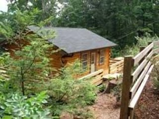 Acorn Cabins Lake Lure ( Chestnut Cabin ) Lake Access
