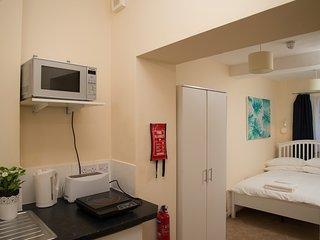 Spacious Ground Floor Studio Apartment Peckham - 10