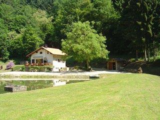Beau gîte avec étang privatif, Siersthal