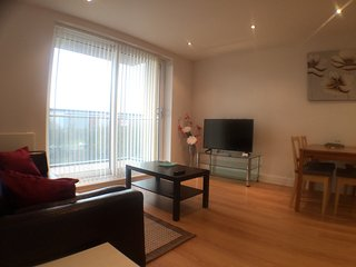 2 Bedroom / 2 Bathroom Service Apartment - Cygnet House, Kennet Island, Reading