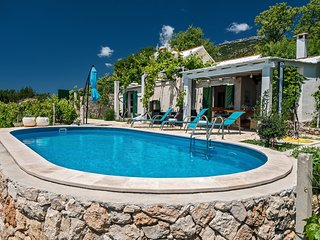 vineyard villa with pool