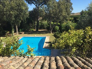 Private villa within walking distance of Port Grimaud, Port-Grimaud
