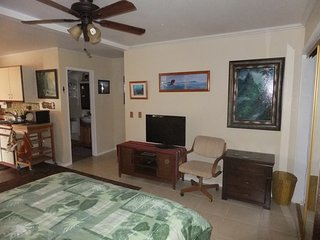 Clean and Spacious Studio at an Affordable Price on the Eastside of Kauai