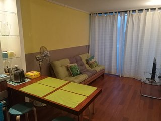 E - Apartment With Andes View, Santiago