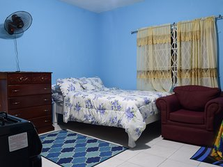 Cozy living, Modern amenities, Central location, Kingston Vacation Rental Apt