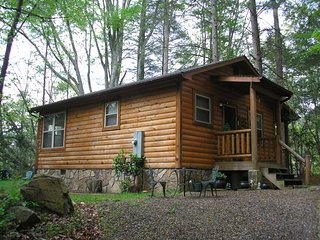 Garden of Eden Cabins Creek/Woods under  100, Cosby