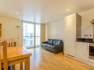 Spacious Denison House 1B Executive apartment in Tower Hamlets with WiFi & lift.