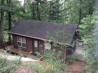 Acorn Cabins Lake Lure  ( Bluebird Cabin ) Lake Access