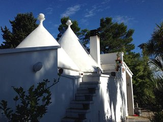 villa due trulli art house con piscina  martina franca