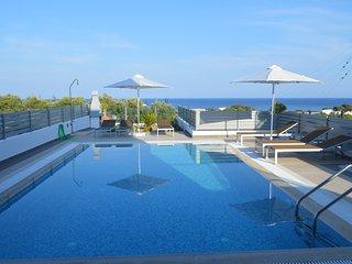 Gennadi Aegean Horizon villas villa A2