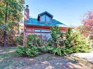 1 Bedroom, 1.5 Bath, Mountain View, Hot Tub, Sauna, WIFI, Sleeps 2, Gatlinburg