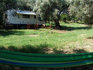 Camper all'ombra degli ulivi., Noto