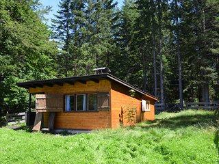 Cozy Cabin in the woods, Buchen