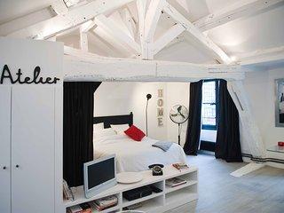 cosy studio, a parisian loft spirit