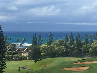The most Gorgeous 2bd2ba OV Villa  in Kapalua!