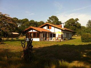 Authentique maison landaise dans un airial de chênes centenaires, Messanges