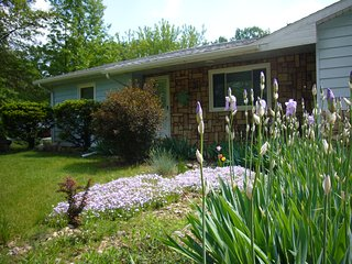 Clear View Cottage - On All Sport Clear Lake / Family and Pet Friendly, Three Rivers