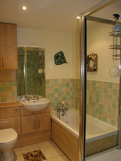 Bathroom: shower and bath
