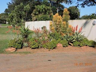 Aloe House