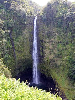 Famous Akaka falls North of Hilo (short loop walk required)
