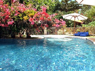 HUGE 4+BR VILLA, 100m to Sanur Beach. Escape to THE VILLA SANUR.