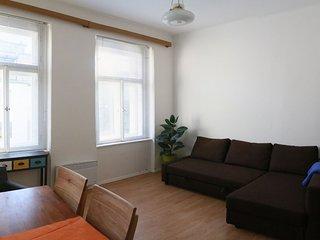 Airy and light 1BDR flat in central Prague, Praga