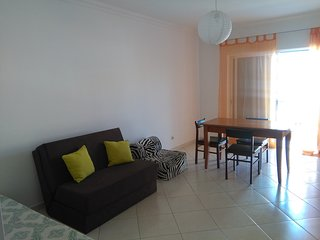 Large one-bedroom apartment w/barbecue