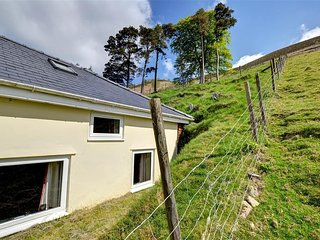 Wye View #12247.1, Llangurig