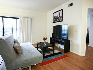Spacious Downtown La Luxury 2bd apt