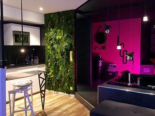 Le Clair Obscur : appartement romantique de luxe à Nantes