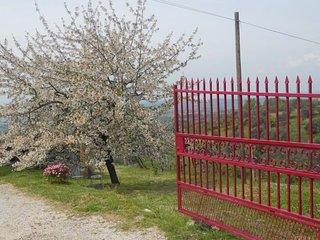 Tramonti e Valli - Bilocale Piano Terra, Otricoli